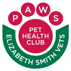 Pet care for dogs